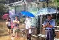上海普降大年夜雨城市运行正常