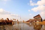 上海的人工湿地