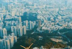 2019香港旅行全攻略