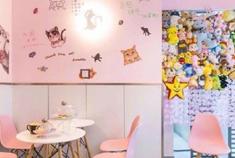 魔都8家撸猫咖啡馆合集