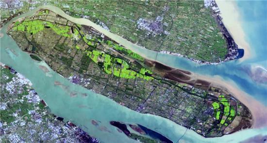 60万米高空看上海的农田竟如此壮观 金色绸缎绿色地毯
