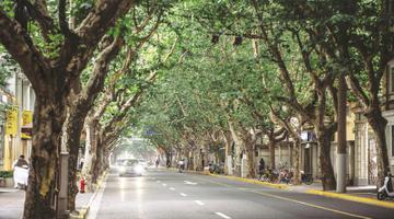 40条马路见证上海改革开放之复兴中路