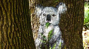 树体彩绘首次亮相申城公园