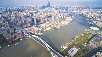 专家对滨江线发展建言献策