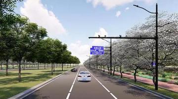 望园路中央公园段森林大道将开工