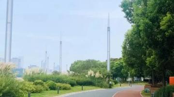 黄浦滨江7个主题公园
