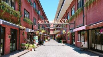 上海小清爽旅游攻略