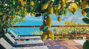 意大年夜利阿马尔菲海岸边的柠檬架子