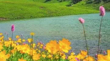 唐布拉仙女湖