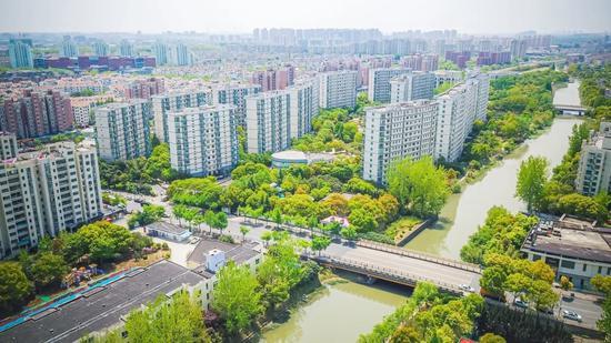 上海首个中心城区园林街镇百花齐放 感受不一般的春色