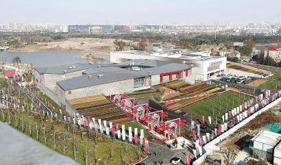 上海海派艺术馆、闵行博物馆新馆开馆 重量级展览亮相