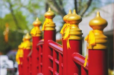 上海试点无烟墓园 用鲜花、黄丝带替代鞭炮清明祭扫