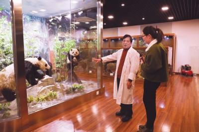 复旦大学标本馆向公众开放 珍藏十多万件动植物标本