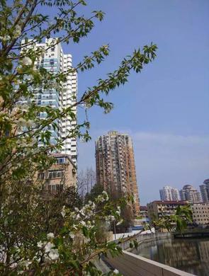 宜川街道整治后变居民后花园