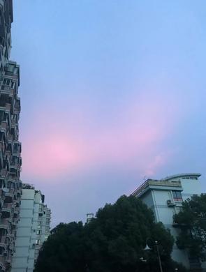 上海昨日现奇幻粉色晚霞 少女心爆棚