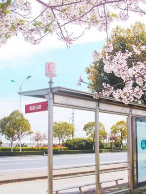 上海这些公交站、地铁站美如仙境