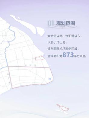 临港新片区国土空间总体规划草案公示