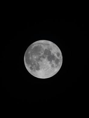十五的月亮十四圆