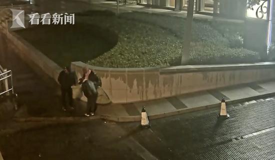 男子凌晨组团在上海市中心疯狂收割绿植550株 全被判刑