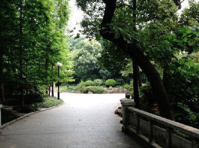 上海最美的9个漫步地点