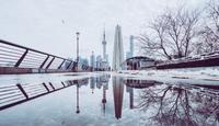 雪花片片随风舞 初雪成就了上海的诗意烂漫