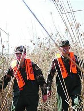 上海边防卫士开展护鸟行动
