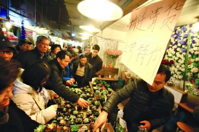 不少市民赶在曹家渡花市关门前来抢购。青年报记者 吴恺 摄