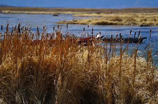 泸 沽 湖