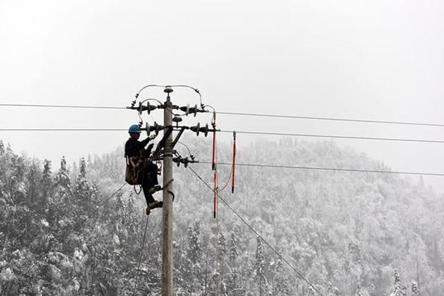 国网上海电力建立灾情预警机制 全力确保电网安全稳定