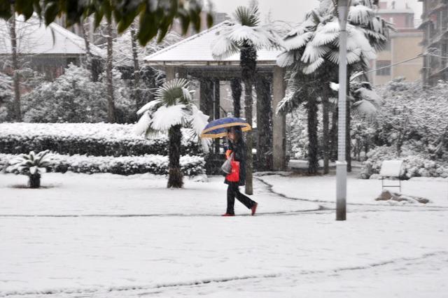 周三半夜起上海局部地区有大到暴雪 并将会持续至周五