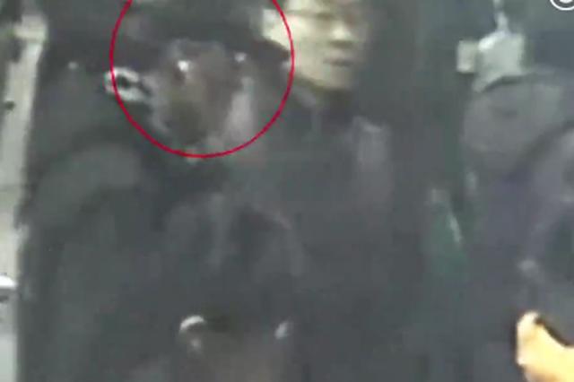 视频:民警伪装上班族守株待兔 抓获地铁偷手机贼