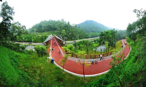 我国推进森林城市群建设 长三角将建国家级森林城市群