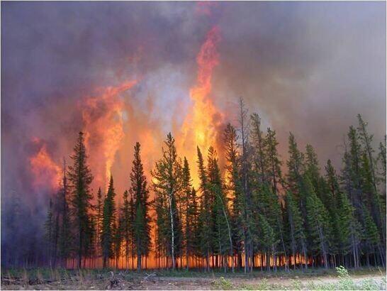 山西对晋中、阳泉、晋城三市森林火灾进行督办
