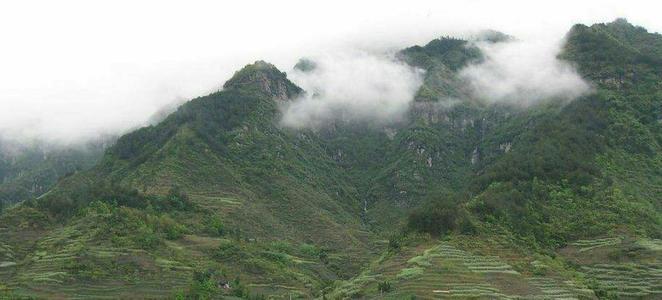 山西开展大规模人工增雨降低森林火险等级
