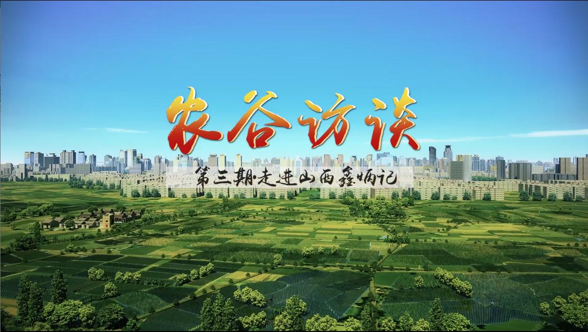 农谷访谈第三期:走进山西鑫炳记