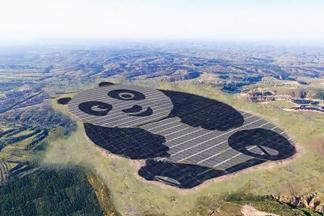 山西大同熊貓寶寶會發電