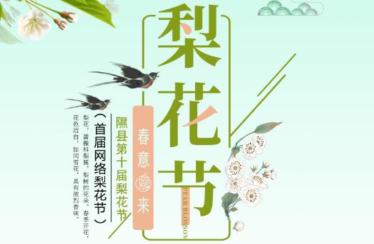 隰县网络梨花节