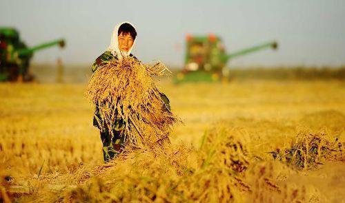 山西近90家农业企业携产品参加2020食品贸易峰会