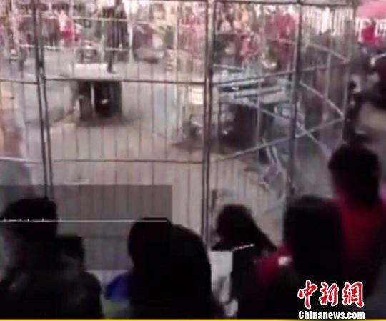 视频画面显示,现场人员密集,老虎冲出笼子后,人群四散,现场一度陷入混乱,幸亏饲养员及时将老虎捉回。 事发现场视频截图