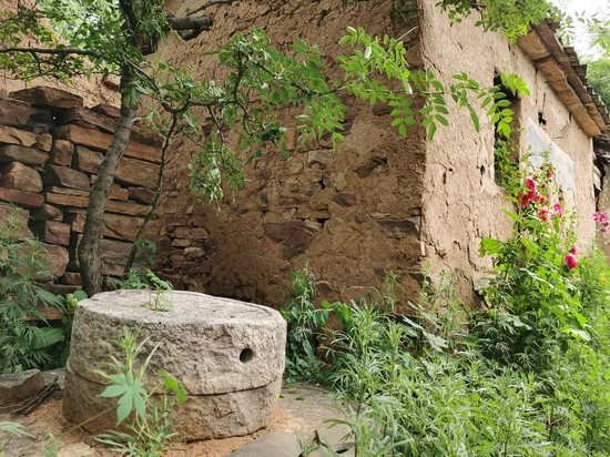 黄草辿村废弃旧宅里的石磨盘