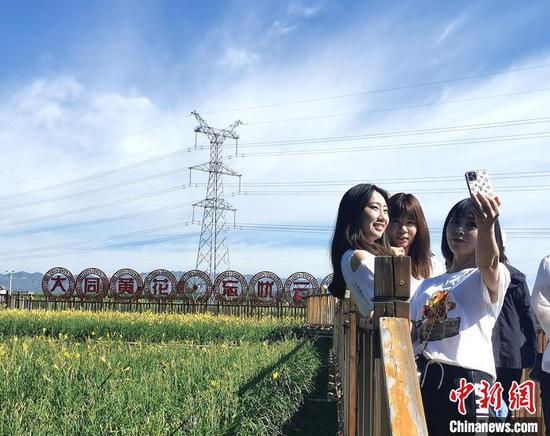 """""""大同黄花""""和杨旗的种植基地也成了""""网红打卡地""""。 杨杰英 摄"""