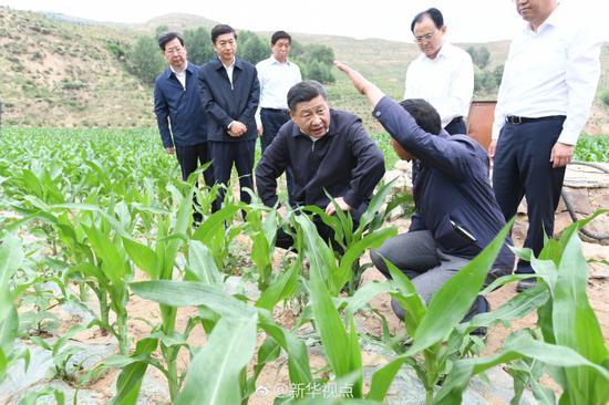 总书记深入田间、登上井台了解村民生产生活情况