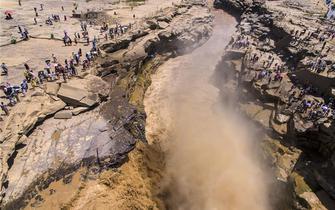 黄河之水天上来 壶口瀑布浊浪滔天