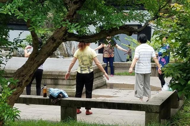 太原市第九届盆景艺术节开幕 为期五天设四个展区