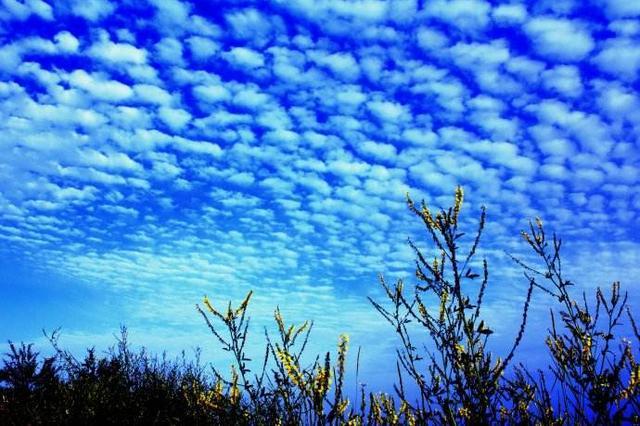 10月1日至7日太原市优良天数5天 同比多2天