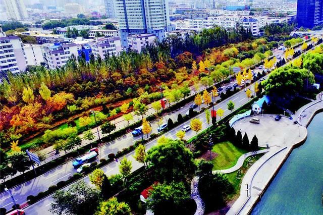 色彩斑斓 龙城秋意浓