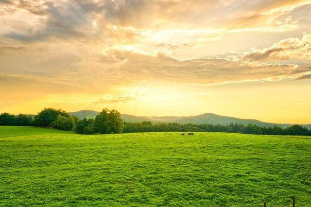都市的田园风光——太原市城郊农业发展扫描
