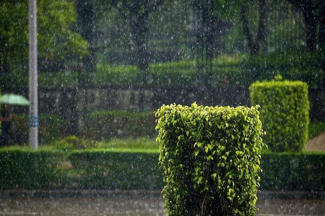 5月21至22日山西大部分地区有小雨或阵雨