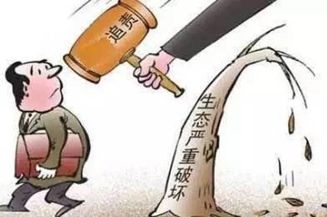 破坏生态环境刑事案件省高院3年审理386件