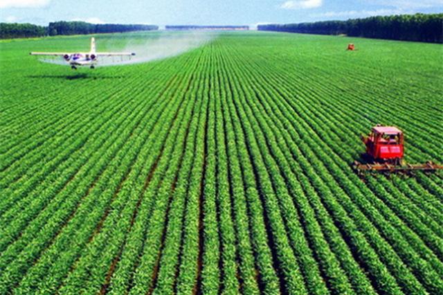 山西夏粮再获丰收 今年总产量达到229.9万吨